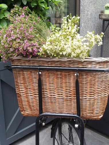 Bikes with baskets - how could you go wrong?